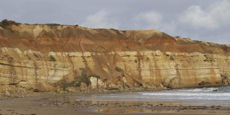 麥克拉倫谷的典型土壤剖面之二。下部白色條紋狀地層為石灰岩。