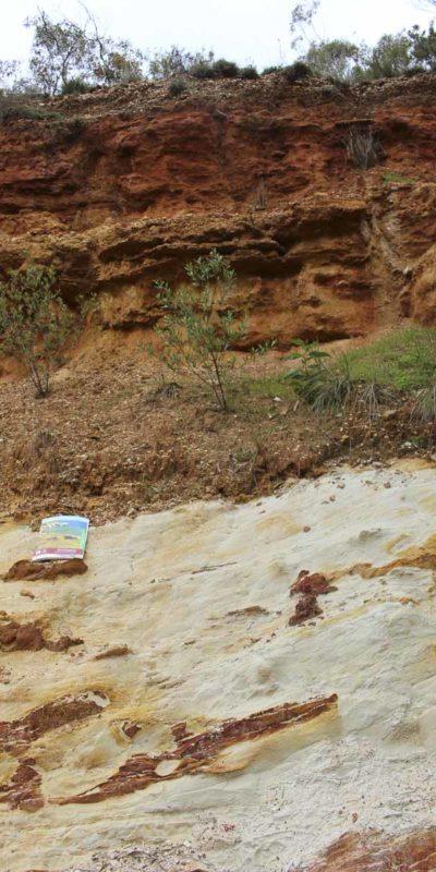 麥克拉倫谷的典型土壤剖面之一。由上至下可見含礫石的粘土及白堊土。