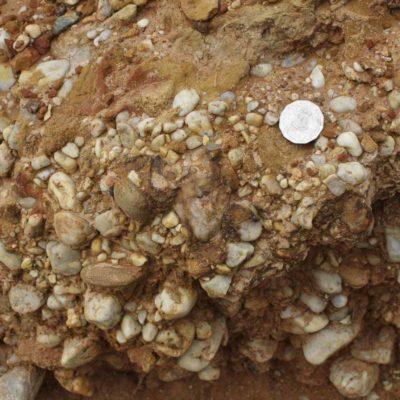 麥克拉倫谷中的含礫石粘土。礫石可以幫助土壤獲得較好的排水性能。