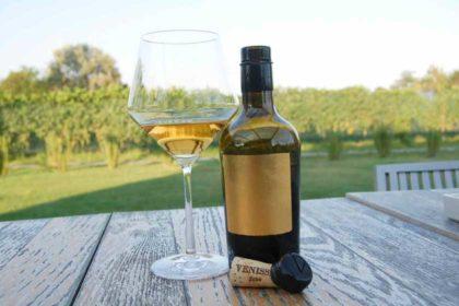 果皮浸漬白葡萄酒 有單寧口感、多層次味道、更富魅力和個性的白葡萄酒