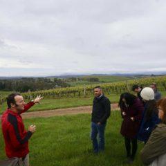 Dalrymple Vineyards的Peter Caldwell帶我們到葡萄園親身感受當地環境。