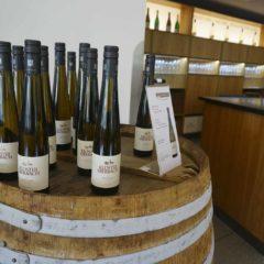 Rheingau是一種極能反映風土的葡萄,不同酒莊有不同風格,即使同一酒莊,來自不同單一葡萄園也展現不同風味:Kloster Eberbach