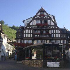 拜訪August Kesseler後到Alte Bauernschänke餐廳午餐:Riesling奶油汁煮豬柳和雞油菌,當然配了一杯Riesling。