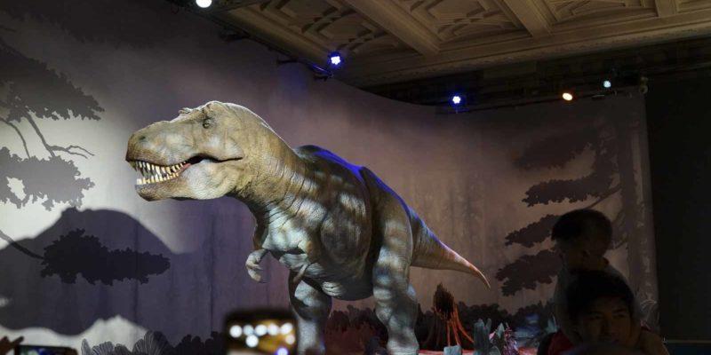 3. Natural History Museum很有規模,由恐龍化骨至昆蟲標本,製作精巧細緻,資料詳盡,絕對值得花幾小時到訪。