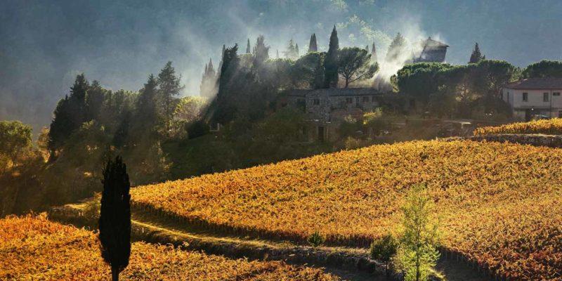 Castello Dei Rampolla 藍寶拉酒莊