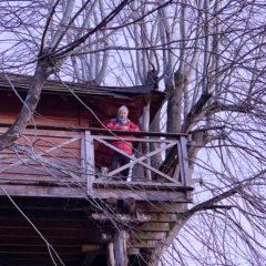 在樹屋上居高臨下