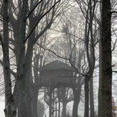 雲霧中的樹屋