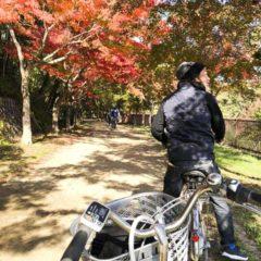 跟著土生土長的日本人踏單車在楓樹林內穿梭,走過的都是社區活動的地帶,遇上很多朋友又打招呼又介紹一番,其中一個朋友還正在後花園採摘自家種植的甜柑,還分享幾給我們一起品嚐,多麼幸福的經歷。